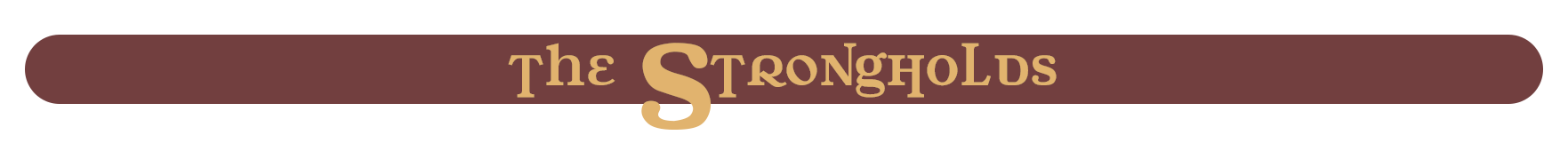 WZAA: The STRONGHOLDS